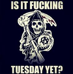 ITS FUCKING TUESDAY!