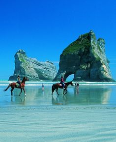 Horseback riding at Golden Bay, New Zealand.