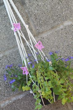 Ravelry: Plant Pot Hanger with Butterfly Trim pattern by Thomasina Cummings Designs Crochet Plant Hanger, Plant Hangers, Pot Hanger, Fingering Yarn, Stitch Markers, Crochet Accessories, Potted Plants, Color Splash, Ravelry