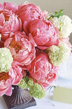 pink peonies and white hydrangea are beautiful paired together in this flower arrangement Beautiful Flower Arrangements, My Flower, Fresh Flowers, Pink Flowers, Floral Arrangements, Beautiful Flowers, Beautiful Things, Peonies And Hydrangeas, Pink Peonies