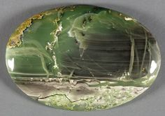 Petrified Wood - Hampton Butte, Crook County, Oregon Petrified Wood, The Hamptons, Oregon, Rocks, Plates, Gemstones, Tableware, Design, Products