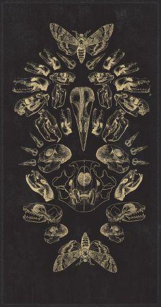 scientificillustration:  Vertex III by Richard Allen http://cargocollective.com/ric/Vertex-III