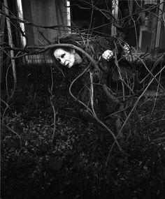 Kazuo Ohno por Eikoh Hosoe