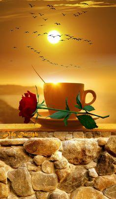 Good Morning Rose Images, Good Morning Coffee Gif, Good Morning Beautiful Pictures, Good Morning Roses, Good Morning Picture, Good Morning Friends, Good Morning Good Night, Morning Pictures, Gif Café