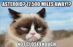 The Official Grumpy Cat on Facebook.com