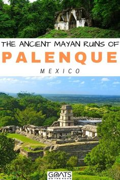 If you're heading to the Yucatan, let us show you what is like Exploring the Ancient Mayan Ruins of Palenque, Mexico! This guide will make you want to discover this ancient history for yourself! | #mayanruins #bestofmexico #yucatan South Korea Travel, South America Travel, North America, Travel Route, Usa Travel, Mexico Destinations, Travel Destinations, Travel Guides, Travel Tips