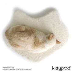 This cap has picked the perfect place for a nap: the Silhouette™! Your cat will feel right at home sleeping on this cat shaped cloth, which is also the logo for kittypod!
