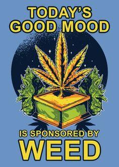 Weed Jokes, Weed Humor, Weed Funny, Cannabis Plant, Marijuana Funny, Dope Cartoons, Dope Cartoon Art, Camoflauge Wallpaper, Ganja