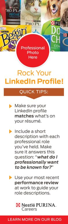 The best way to learn about a new career is to hear it first hand from current employees. Rock your LinkedIn profile before reaching out! Cute Cats And Dogs, New Career, Profile, Meet, Good Things, This Or That Questions, Rock, Learning, How To Make
