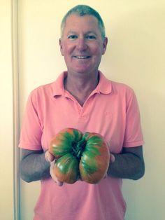 This is one of our favorite summer hobbies: grow beautiful, super tasty giant tomatoes. Questo è uno dei nostri hobby estivi: coltivare pomodori super giganti.