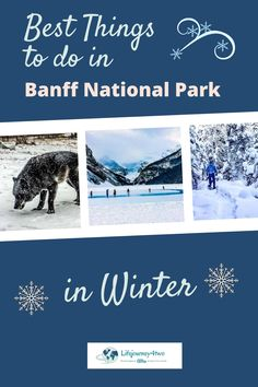 Banff National Park is a winter wonderland and has so many awesome things to do. It's a magical wilderness of mountain peaks, frozen lakes, wildlife encounters, red cheeks and festive fun. Click into this winter wonder here ...#banffnationalpark #winter #banff #canada