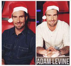 funny adam levine quotes images | Adam Levine | Pinterest | Adam ...