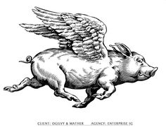 Flying  Pig line drawing | ... icons informative maps line art nostalgia realism stylised visuals