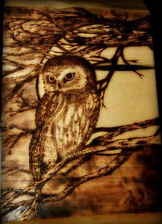 beautiful Pyrography | Recent Photos The Commons 20under20 Galleries World Map App Garden ...