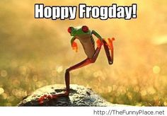 Happy friday image with a frog