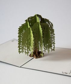 Delight them with a surprising pop up card that brings a willow tree to life