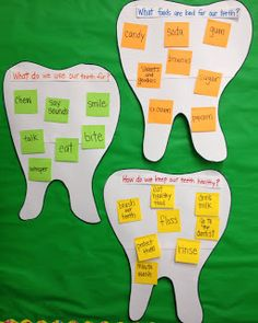 What Foods Are Bad For Our Teeth? What Do We Use Our Teeth For? How Do We Keep Our Teeth Healthy?