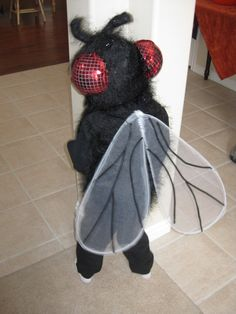 fly+costume.jpg 1,200×1,600 pixels