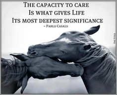 caring..this says it all...