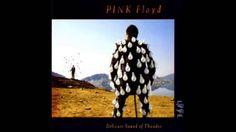 Pink Floyd-Delicate Sound Of Thunder FULL CD