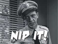 Barney Fife Quotes Barney Fife Quotes Sayingsquotesgram  Golden Oldies  Pinterest .