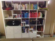 Kattenboekenkast, zelf ontworpen en gemaakt