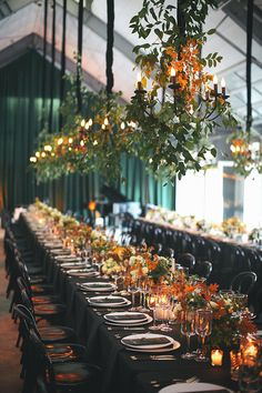 Dark palette counterbalanced by the white interior and lush greenery on and above the table.