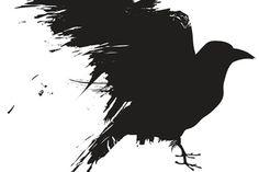 Crows Understand Analogies - Scientific American