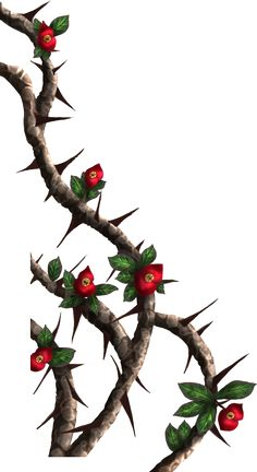 thorn vines | Crown-of-thorns - painted by DameOdessaStock on DeviantArt