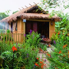 Polynesian-style shed serves both as storage and as a focal point among tropical plants