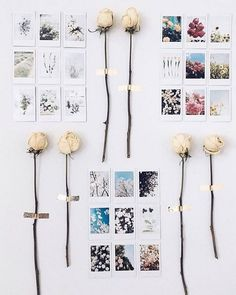 Beautiful Polaroid Photos Display Idea (105)
