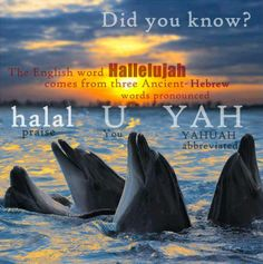 "♥♥♥Yahuah (""Gods"" name [I put God in quotation because god is only a title..not a name])!"