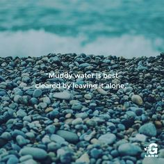 Muddy water is best cleared by leaving it alone. #quote #inspiration