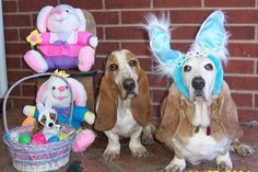 Easter Wishes- Gracie & Loretta