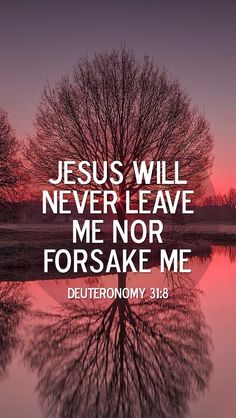 Jesus will never abandon you. No matter what you do or say Jesus will ALWAYS stay with you. Jesus loves you infinitely and will be by your side always and forever. Bible Verses Quotes, Bible Scriptures, Biblical Verses, Scripture Verses, Faith Quotes, Christian Life, Christian Quotes, Deuteronomy 31 8, Psalms