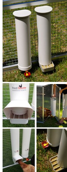 chicken feeder/waterer
