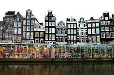bloemenmarkt (floating flower market) on the Singel canal in Amsterdam
