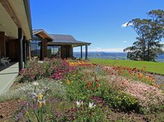 Dunedin Saddle Hill Lodge New Zealand, Pacific Ocean and Australia The 4-star Saddle Hill Lodge offers comfort and convenience whether you're on business or holiday in Dunedin. Both business travelers and tourists can enjoy the hotel's facilities and services. Service-minded staff will welcome and guide you at the Saddle Hill Lodge. Guestrooms are fitted with all the amenities you need for a good night's sleep. In some of the rooms, guests can find towels, internet access – wi...
