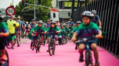 Auckland's new Lightpath cycleway has drawn cyclists in the 12 days since it opened, according to official . Cyclists, 12 Days, Auckland, Thing 1 Thing 2, Pathways, Purple, Pink, Asia, Old Things
