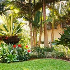 Ideas para jardines pequenos jardin for Jardines verticales panama