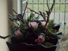 bloemstuk Plants, Plant, Planets
