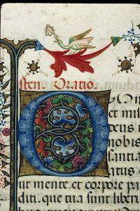 Breviaire Franciscain Canard Et Mouche Avec Images Licence