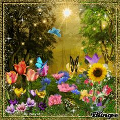 Blingee Love Indian Pictures | Flowers And Butterflies Animation Flowers And Butterflies 2