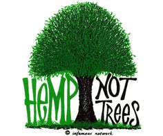 Hemp has a long history of being used as food grain and a source of fiber, such as clothing, rope and netting as well as for spiritual, medical, nutritional and industrial purposes. Hemp is one of the oldest and most versatile crops in the world. Thousands of years hemp seeds, stalks and flowers have been used for nutritious, medical, spiritual and industrial purposes. The seed oil is rich in essential fatty acids (gamma linoleic acid a very rare nutrient found in mother's milk) and vitamin…