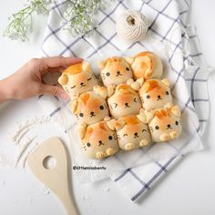 Soymilk Kitty Bread Pull Apart Buns