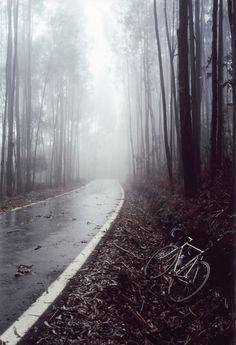 forgotten bike.