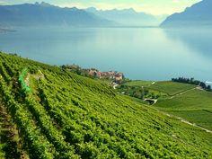 lac Léman Côté Suisse Cîmes du Léman