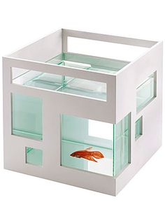 Super cool hotel for fish!  I want this for my counseling office!