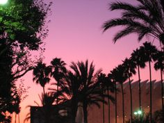 Sunset over LACMA, mid-Wilshire, Los Angeles