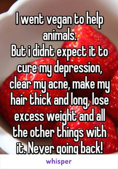 I went vegan to help animals. But i didnt expect it to cure my depression, clear my acne, make my hair thick and long, lose excess weight and all the other things with it. Never going back!<< I know a fat vegan How To Become Vegan, How To Make, Vegan Quotes, Vegan Memes, Vegan Funny, Vegan Facts, Why Vegan, Vegan Vegetarian, Whisper Confessions